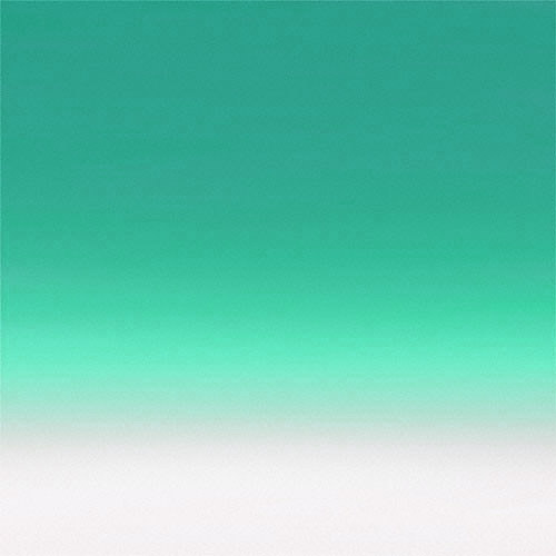 Flotone Vinyl Graduated Background 43″x 63″ Green to White #GFT604